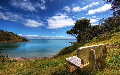 Library - New Zealand Bench by the Ocean Scenery