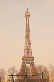 Eiffel Tower in sepia, Paris, France