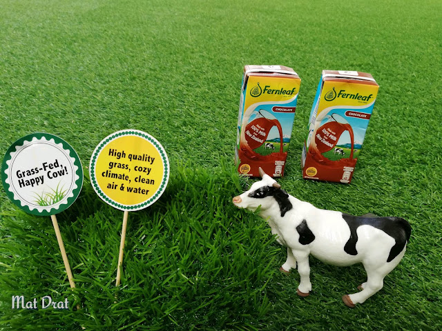 Susu Fernleaf UHT dari New Zealand