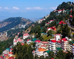 travelocar taxi in shimla