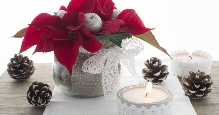 Marlenes sweet things Werbung Weihnachtsstern Tischdekoration