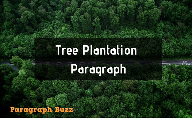 Tree Plantation Paragraph for School Students