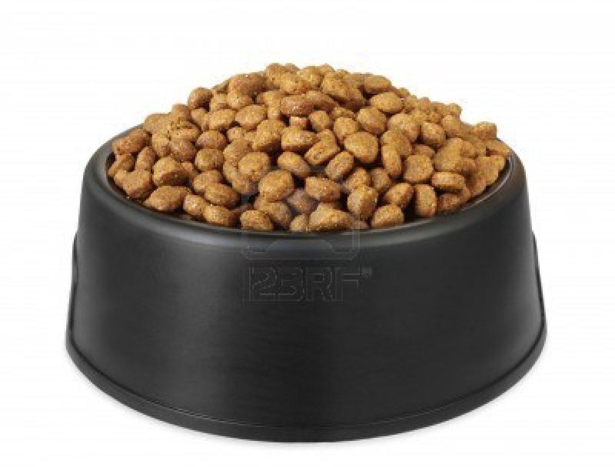 Dog Food Minerals