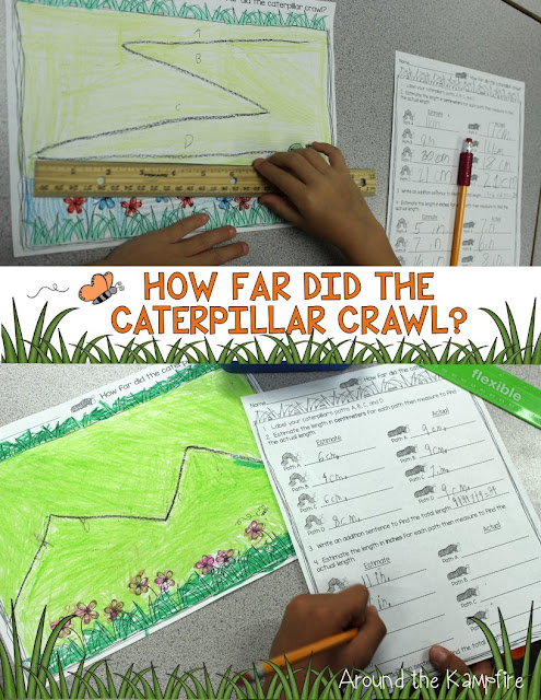 Integrating math into our butterflies unit~Students measured and comparedlengths a caterpillar crawled.