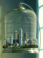 città nella gabbia