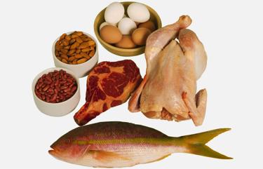 lista de alimentos ricos en proteinas animales
