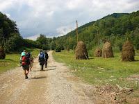 Дорога в селе Буковое