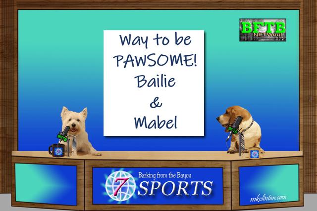 BFTB NETWoof News Sports segment