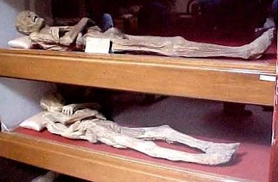 Foto de momias de Guanajuato echados