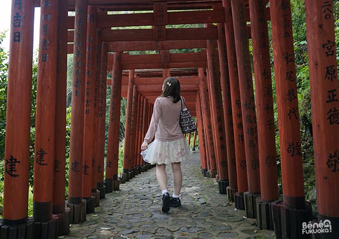Chemin de torii, Yûtoku Inari, Saga