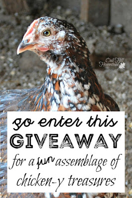 Go enter this giveaway for a fun collection of chicken-y items to celebrate Oak Hill Homestead's blogiversary.