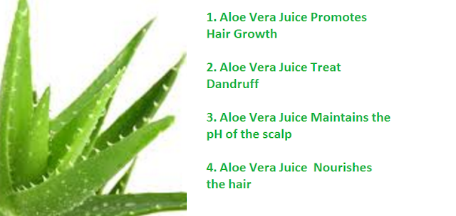 Following are some of the benefits of aloe vera for your hair