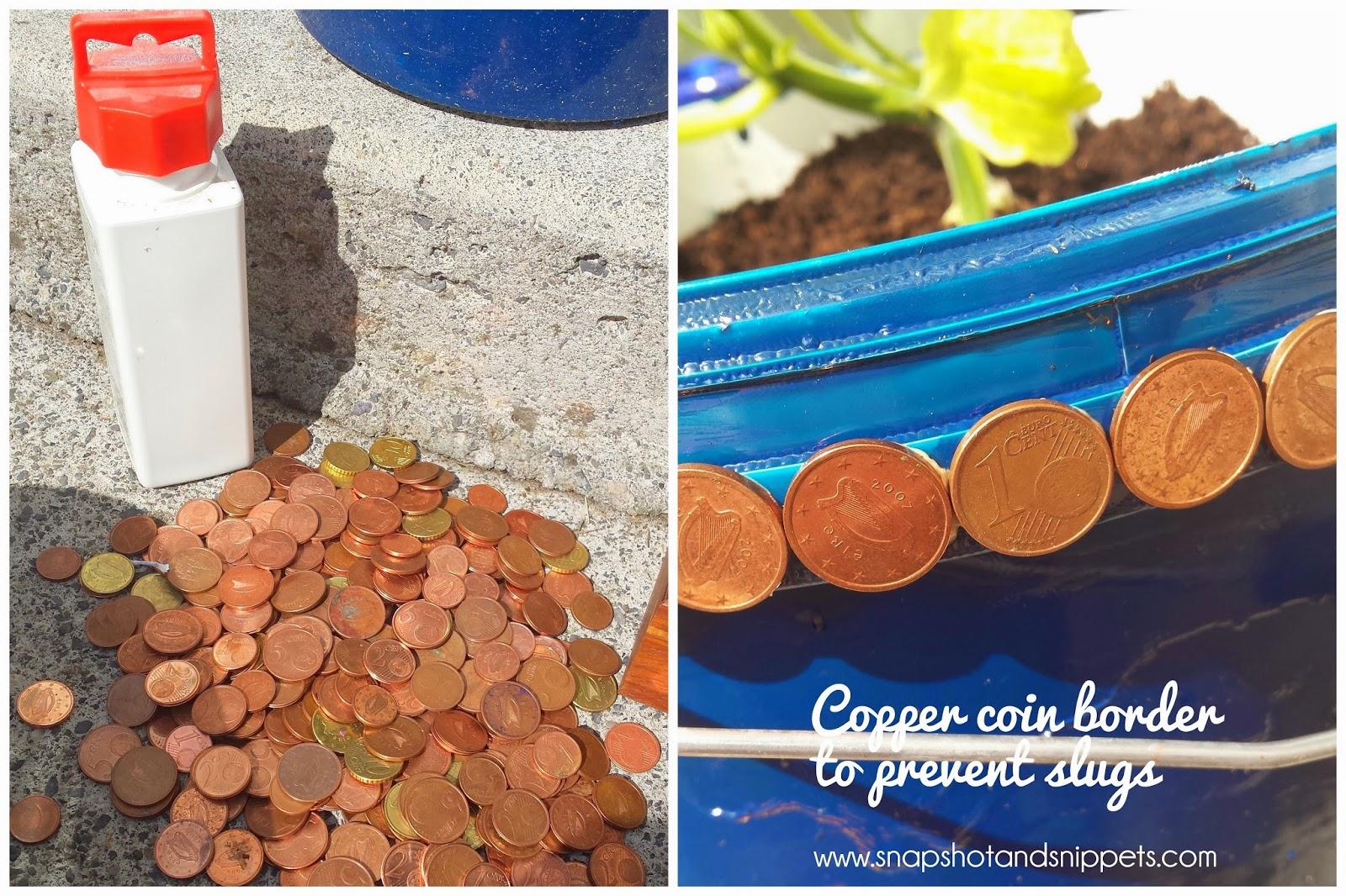 Copper slug deterent
