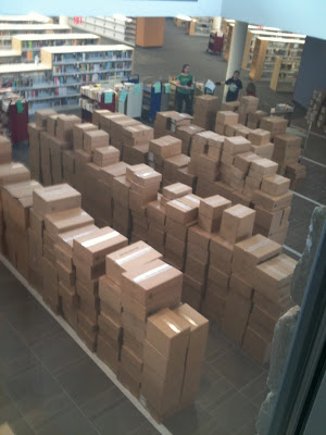 mountain of boxes of books
