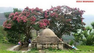 gopu-bisht-pahadi-village-tunta