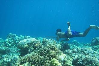 Μέλη ινδονησιακής φυλής μπορούν να κρατήσουν την αναπνοή τους για 13 λεπτά - Οφείλεται στην σπλήνα;