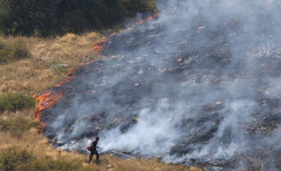 700 hectáreas de bosques incendiadas en Armenia