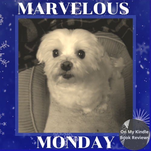 Marvelous Monday with Lexi: 12/03/18 Edition!