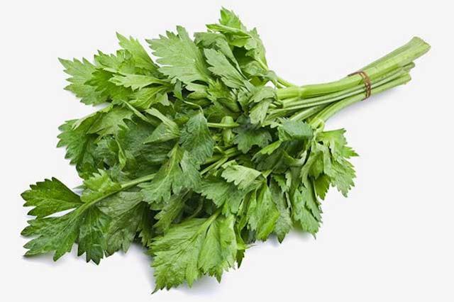 Manfaat daun seledri untuk kulit wajah berminyak