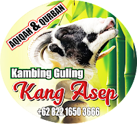 Supplier kambing guling ciater