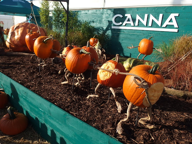 The amusing pumpkin display outside the Giant Vegetable tent