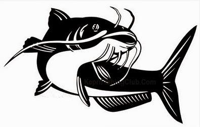 Memancing ikan lele mungkin untuk pandangan orang awam ialah sangat mudah yaitu tinggal 9 Tips Jitu Mancing Ikan Lele