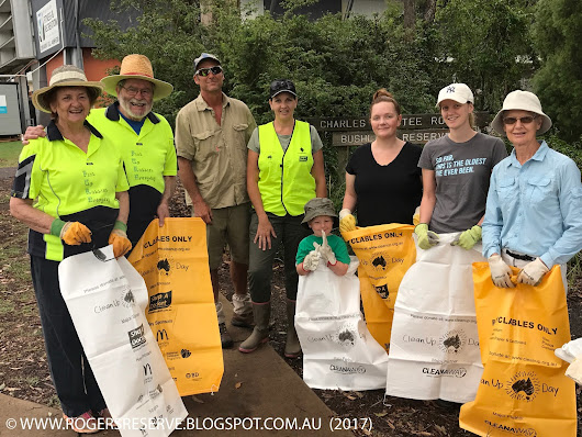 Clean Up Australia Day 2017 Rogers Reserve Highfields