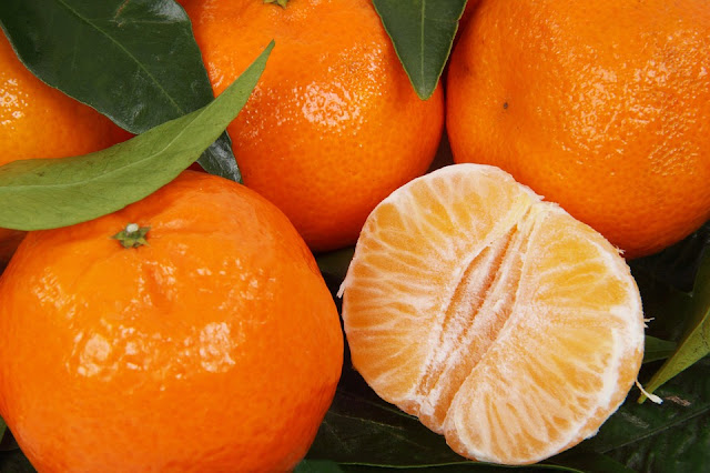Εξαιρετική ποιότητα της Κλημεντίνης στην Αργολίδα με μειωμένη παραγωγή και χαμηλότερες τιμές