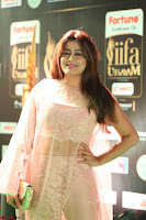 Nidhi Subbaiah Glamorous Pics in Transparent Peachy Gown at IIFA Utsavam Awards 2017  HD Exclusive Pics 30.JPG
