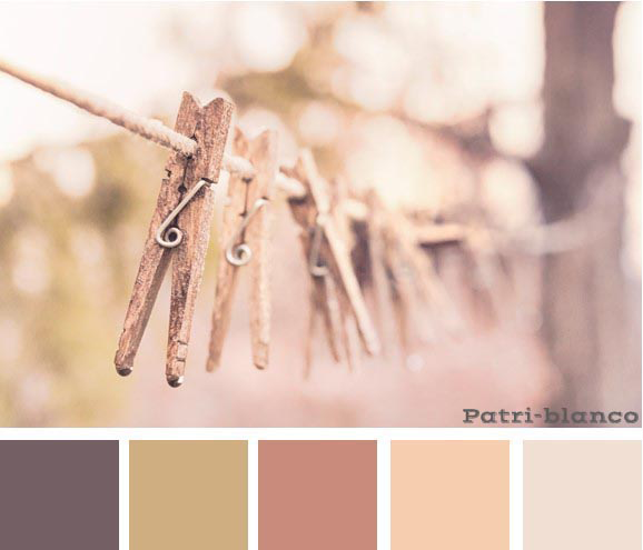 paleta color