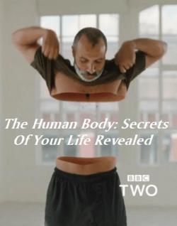 Những Bí Ẩn Về Cơ Thể Người - The Human Body Secrets of Your Life Revealed (2017)