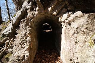 Blick in ein freiliegendes Stück des Römerkanals. Dieser ist eingestürzt und mit Laub bedeckt.