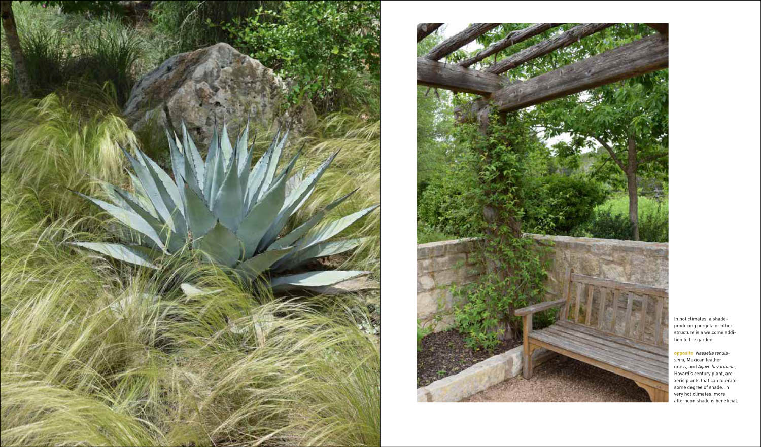 ...and Mediterranean Inspired Wall Or Courtyard Gardens: