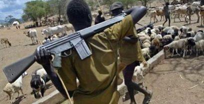 Armed-Fulani-herdsmen-e1494140264801