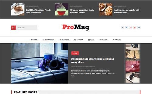 Free ProMag Blogger Template download