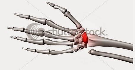 cauze autoimune ale bolilor articulare болезнь суставов рук, как лечить