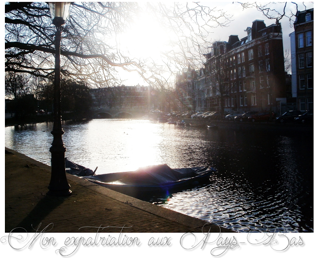 lifestyle -blog- expat the netherlands -amsterdam