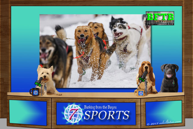Dog sports desk with Iditarod race in backgound