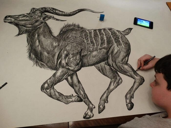 13-Nyala-Antelope-like-Dušan-Krtolica-No-Reference-Drawings-come-from-Memory-www-designstack-co