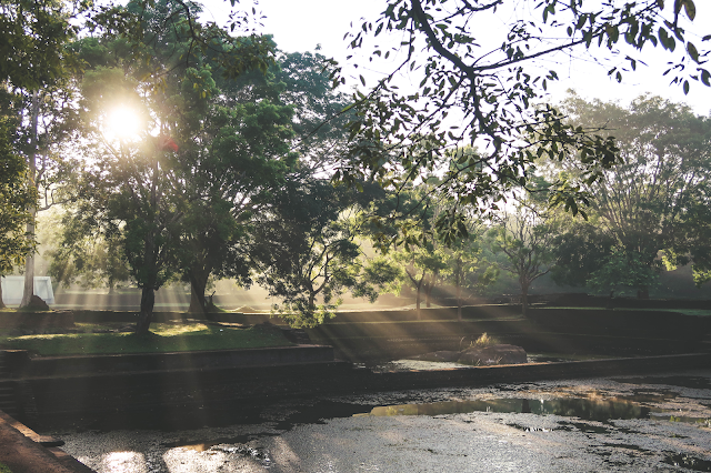 Sri Lanka Lion Rock Sigiriya Gardens