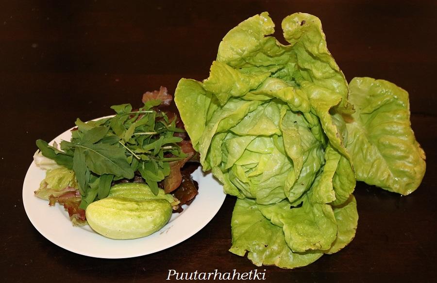Keräsalaatti