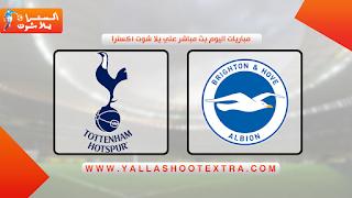 مباراة برايتون و توتنهام 5-10-2019 في الدوري الانجليزي