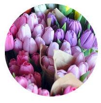 Soft Summer seasonal color palette flower bouqet illustration