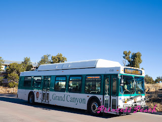 grand-canyon-national-park-shuttle-bus