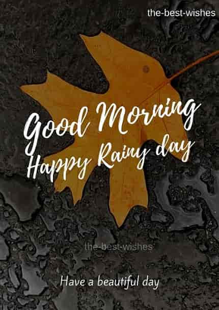 Happy Rainy Good morning Nature