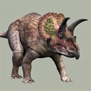 Foto Triceratops