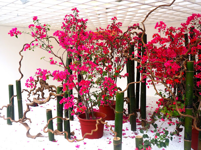 Pink flower display at Hong Kong Flower Festival 2017
