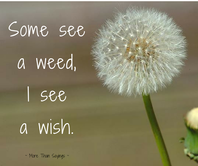 Some see a weed, I see a wish quote