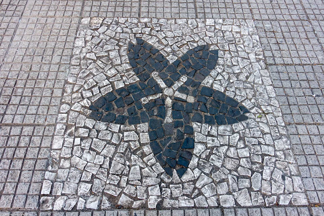 Calçada com desenho de flor de cerejeira.