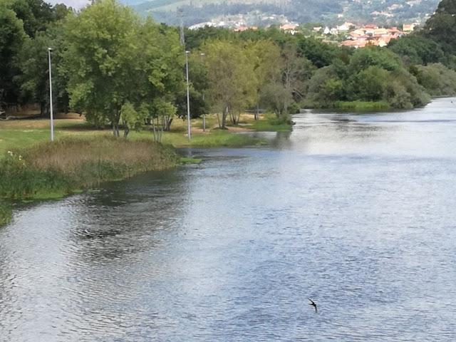 margens do Rio Lima em Ponte de Lima